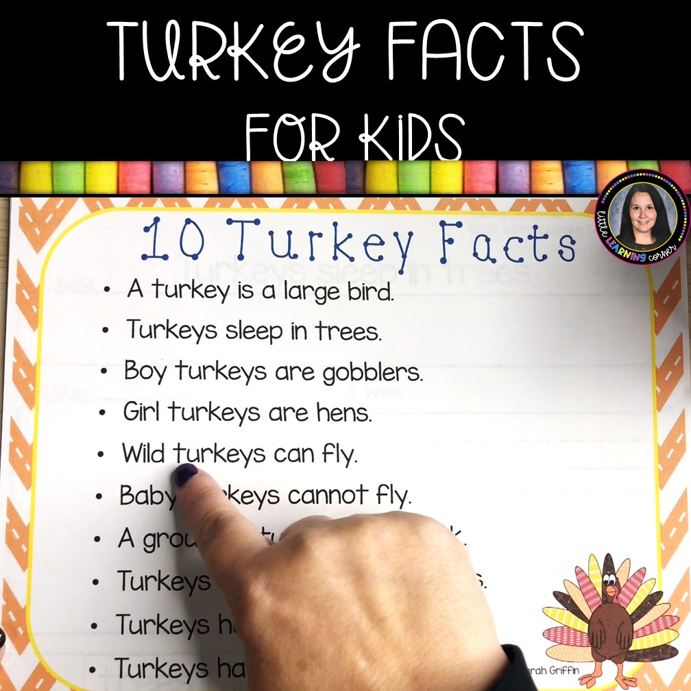 turkey-facts-for-kids-facts