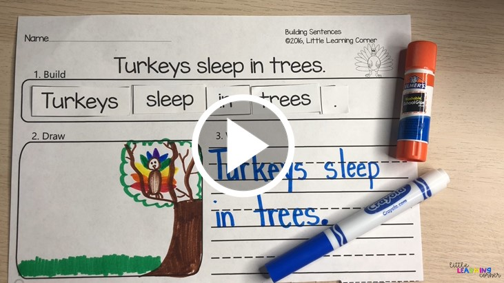 turkey-facts-for-kids-video
