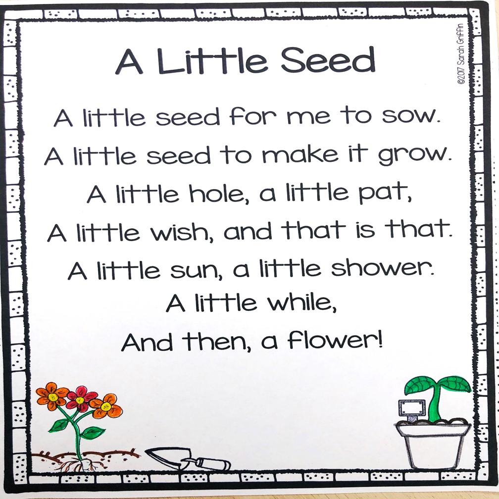 12 Spring Poems for Kids   Little Learning Corner