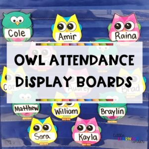 owl-attendance-feature