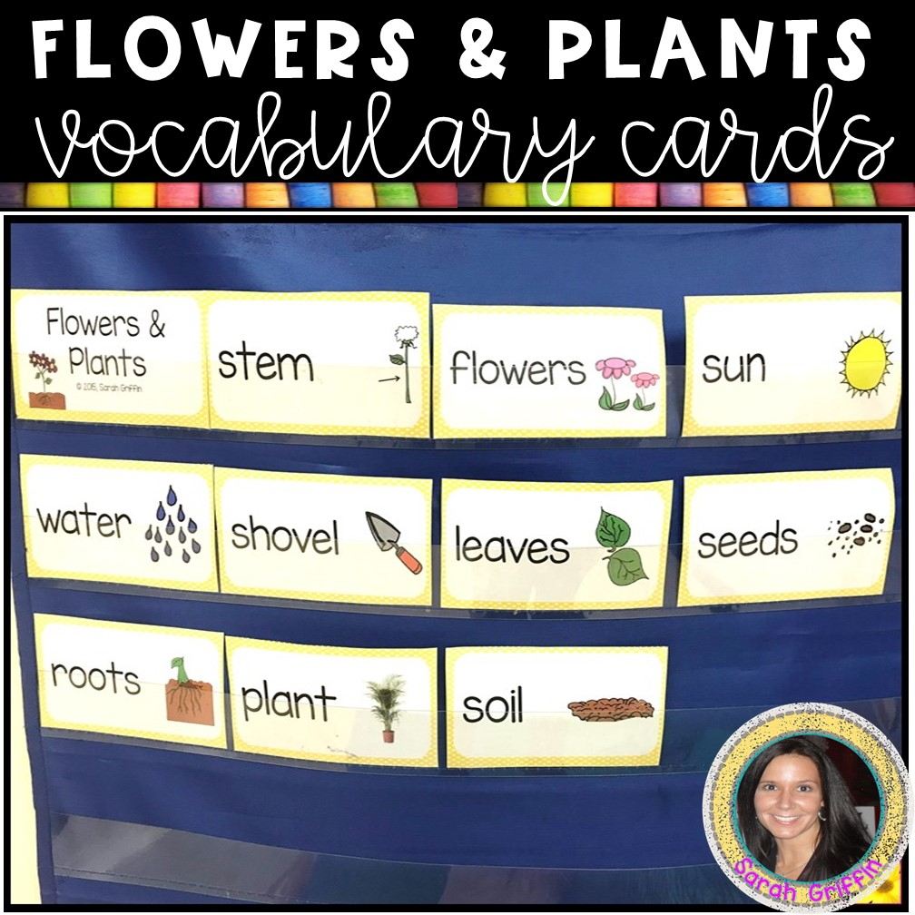 flowers-and-plants-writing-activity-vocabulary-cards