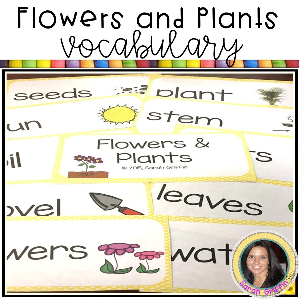 flowers-and-plants-writing-activity-vocabulary
