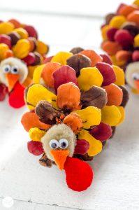 turkey-pinecones