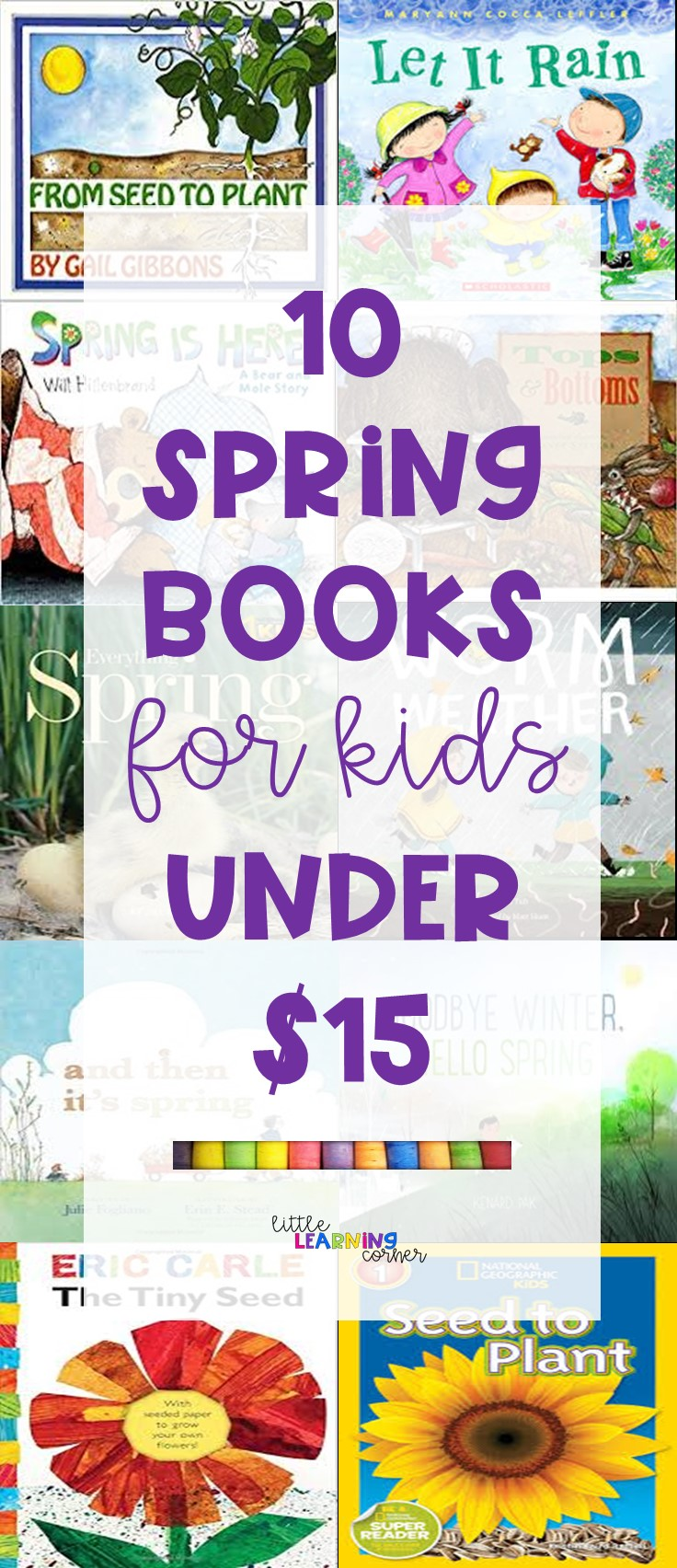 books-about-spring-pin