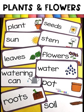 books-about-spring-vocab
