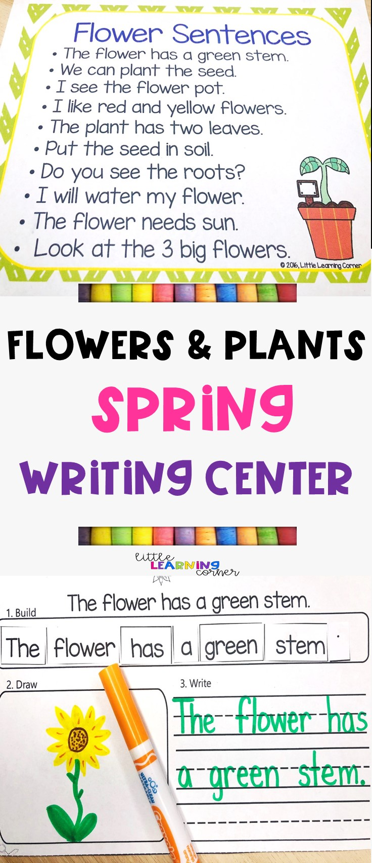 spring-activities-pin-building-sentences