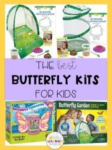 butterflies-and-caterpillars-kit-pin