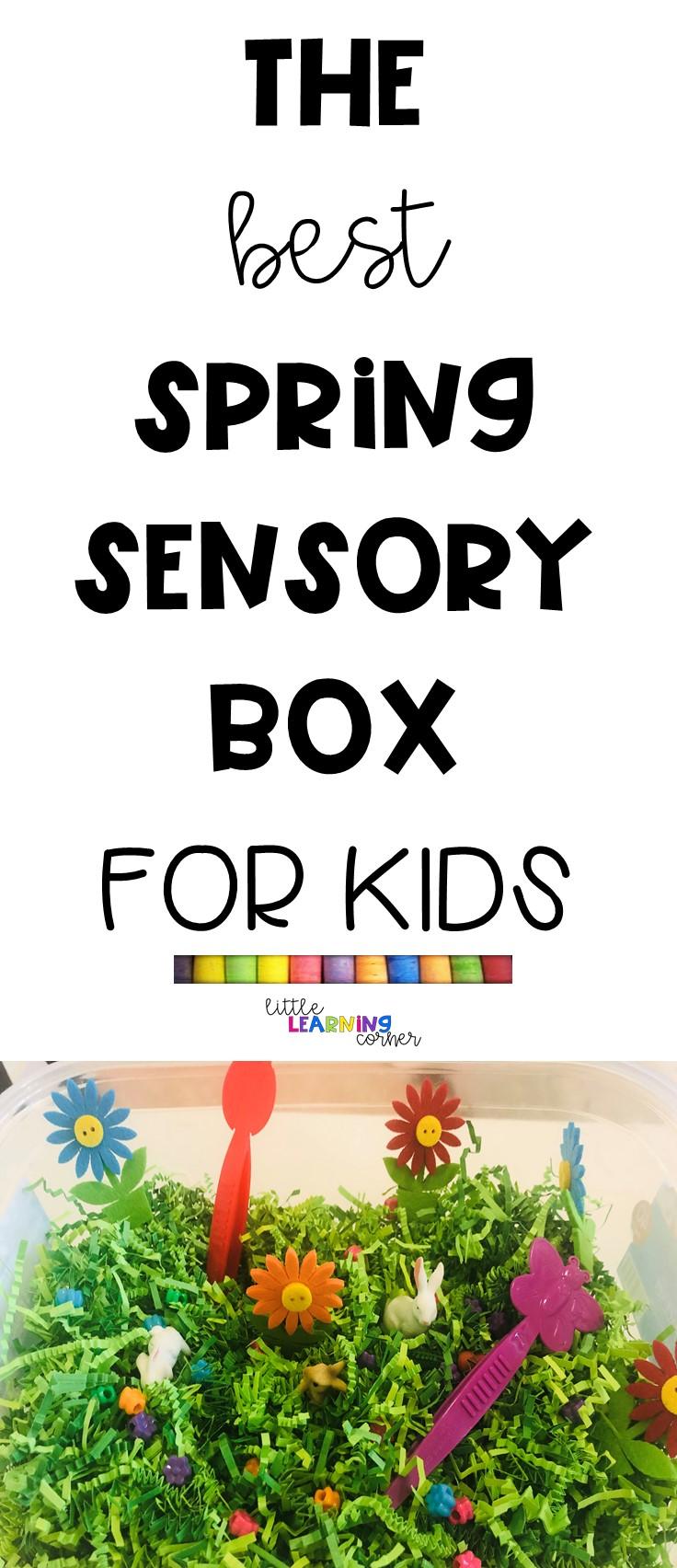 spring-sensory-box-pin