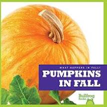 pumpkin-book