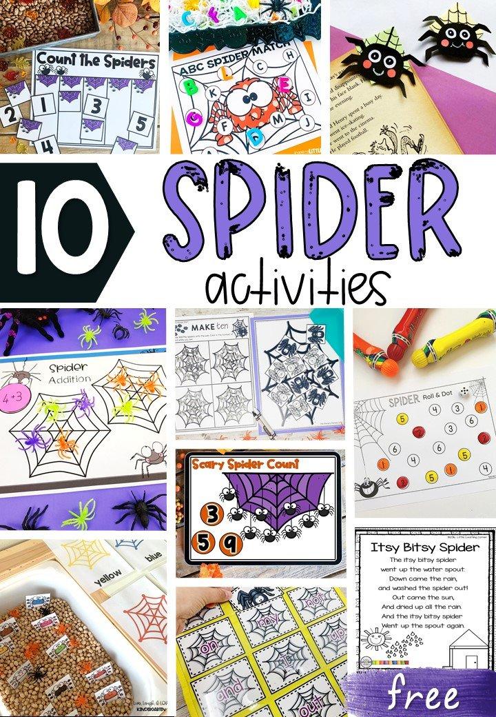 free-spider-activities