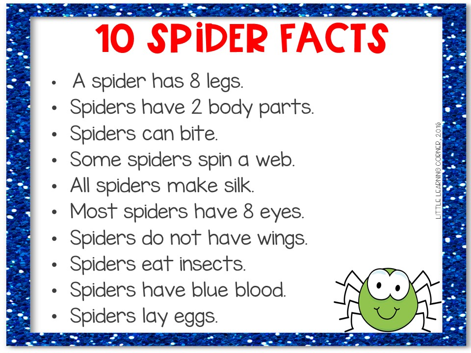 spider-facts-for-kids-printable