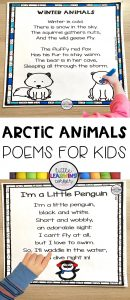 arctic-animals-poem-pin