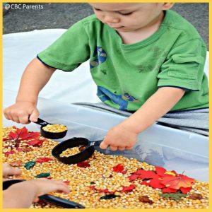 harvest-sensory-bin-little-learning-corner